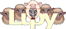 lupy.com